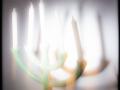 25062016-IMG_6949-chandelier-bougie-phb-juin2016