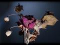 29062016-IMG_7212-rose-2004-phb