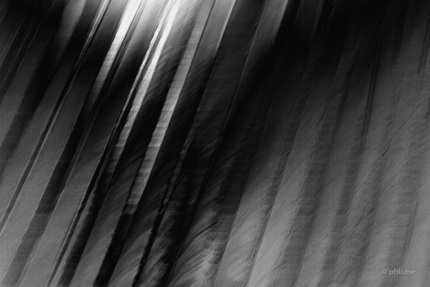 IMG_4768-soulages-phb-14aout2014