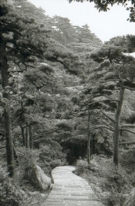 hudangshang-01-chemin