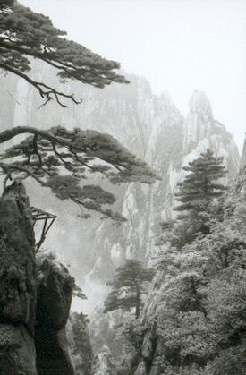 hudangshang-03-vue