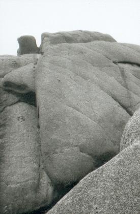 hudangshang-17-pic-des-singes-detail