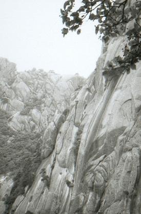 hudangshang04-vue-oiseau