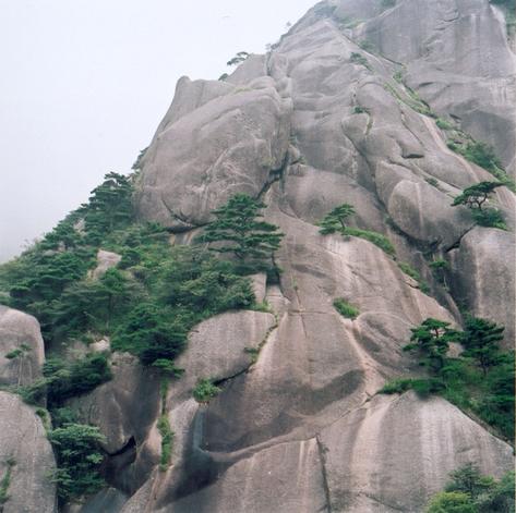hudangshang07