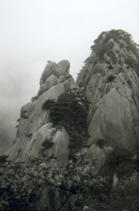 hudangshang19-vue