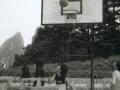 hudangshang-10-basket