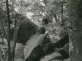 hudangshang-25-singes