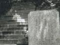 hudangshang22-porteurplaque