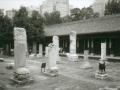 pekin-102b-dongyue-si-tortues-immeubles