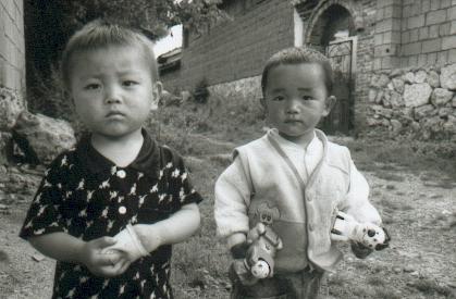 yunnan-baisha09-pichons