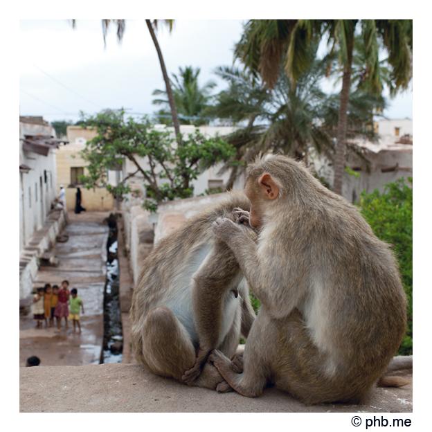 862-badami-india2011-novembre