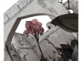 317-bijapur-citadelle-india2011-novembre