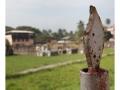 394-cochin-cimetiere_jew-town-india2011-novembre