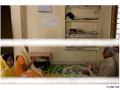 407-cochin-synagogue_chendamangalam-chant-india2011-novembre