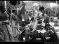 Pondicherry Brahman 005