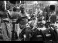 Pondicherry Brahman 007