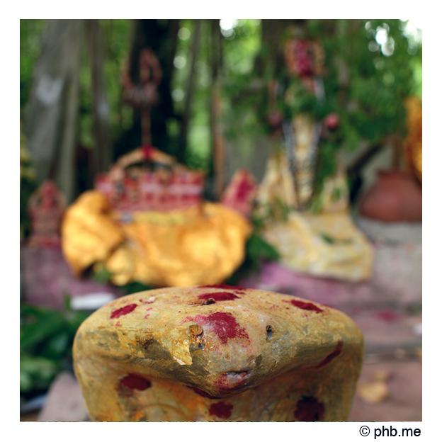 031enbaladekoitakkararey_india2011-aout