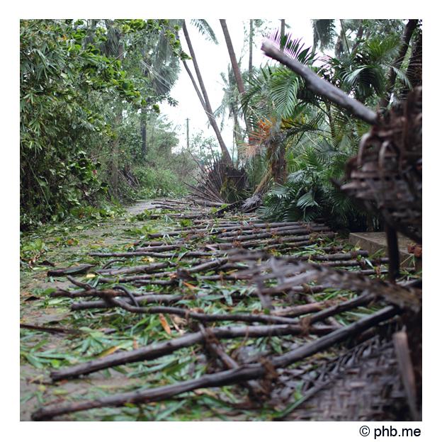 serenity2011-cyclone118