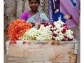 010enbaladepondi_india2011-juillet