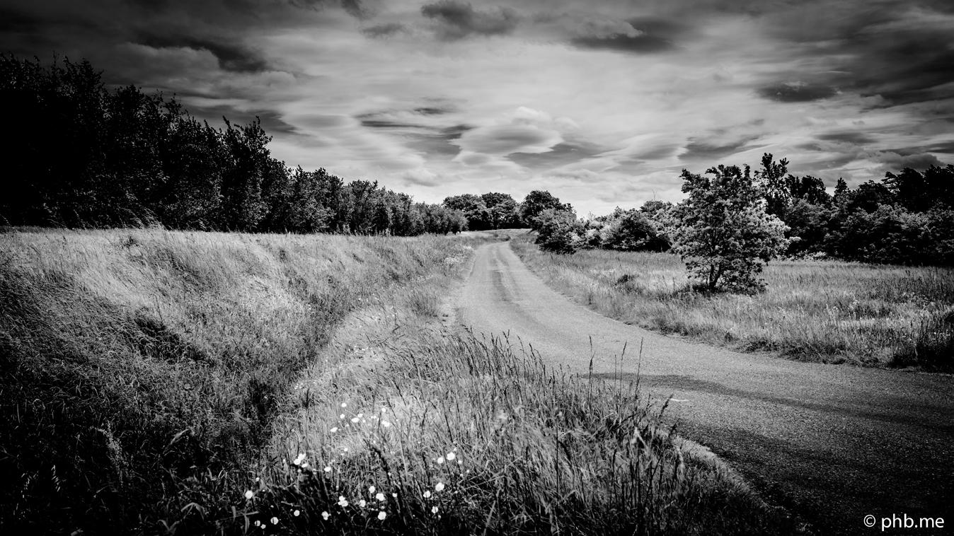08052016-IMG_4598-paysage-campagne-dim8mai2016