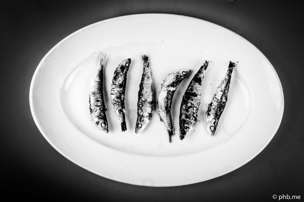 08052016-IMG_4686-sardine-8mai2016