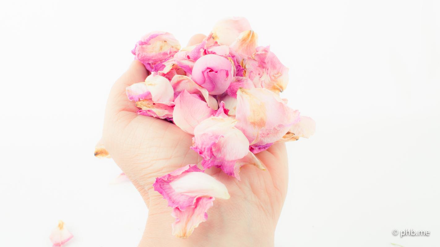 17072016-IMG_7835-2-roses-main-phb-17juillet2016