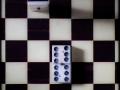 18062016-IMG_6669-dominos-sur-dames