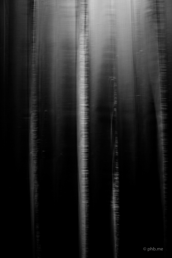 IMG_4778-2-soulages-phb-14aout2014