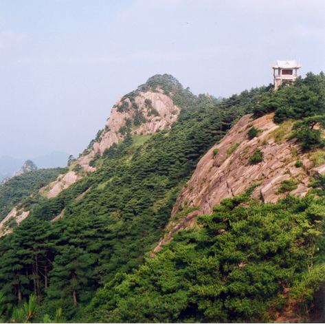 hudangshang-06
