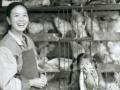 chengde07-marchandepouletvivantetsafille