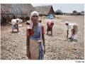 284-abutcudallore_india2011-octobre