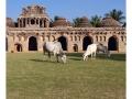 812-hampi-india2011-novembre