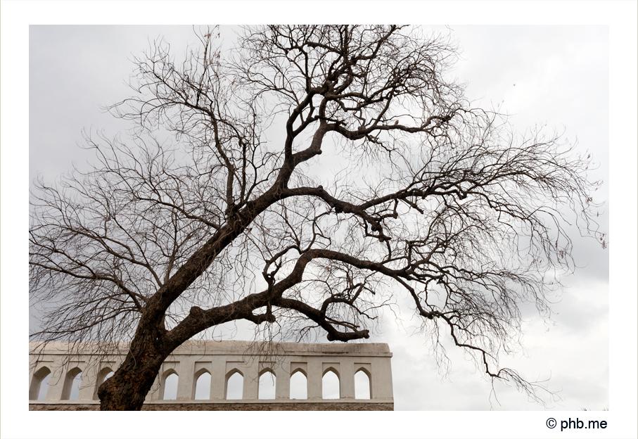 314-bijapur-citadelle-india2011-novembre