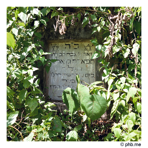 378-cochin-synagogue_chendamangalam-india2011-novembre