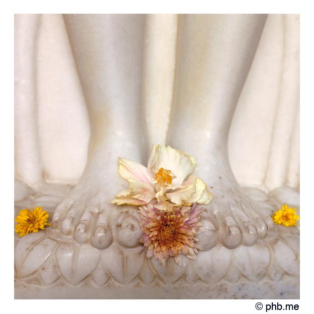540-hassan-jain_temple-india2011-novembre
