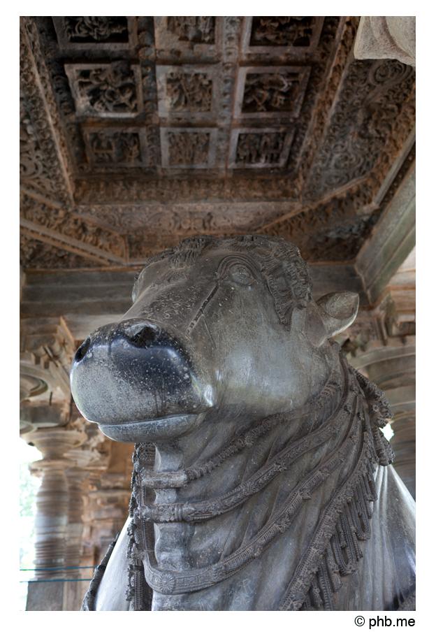 613-hassan-temple_halebidu-india2011-novembre
