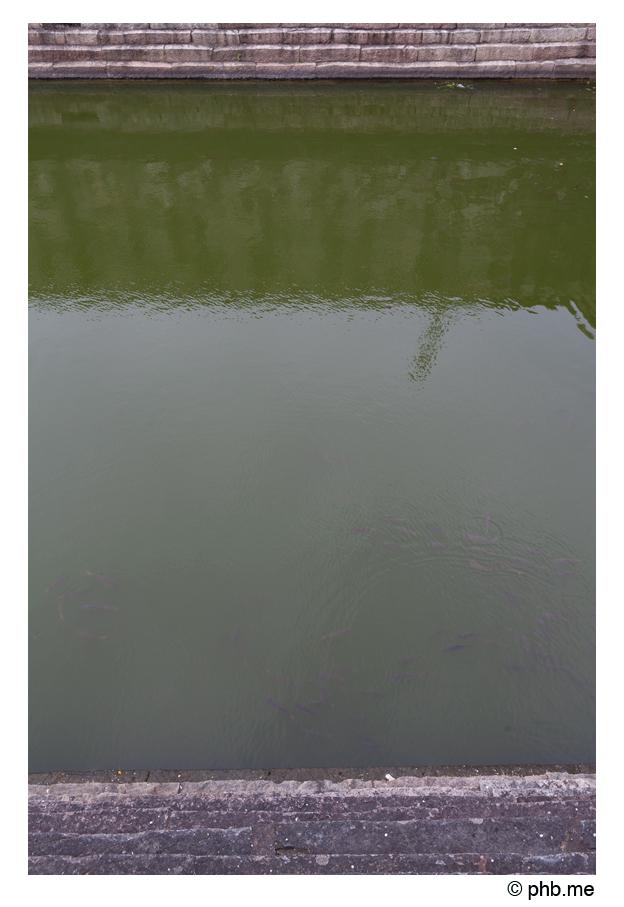 729-hassan-temple_belur-india2011-novembre