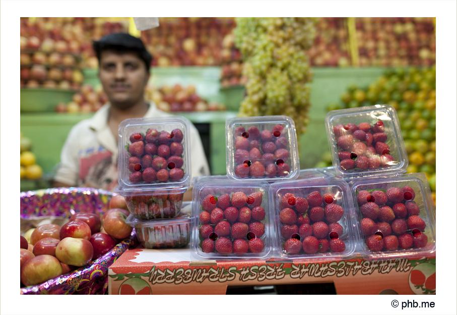 733-hassan-india2011-novembre