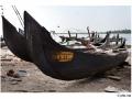 351-cochin-india2011-novembre