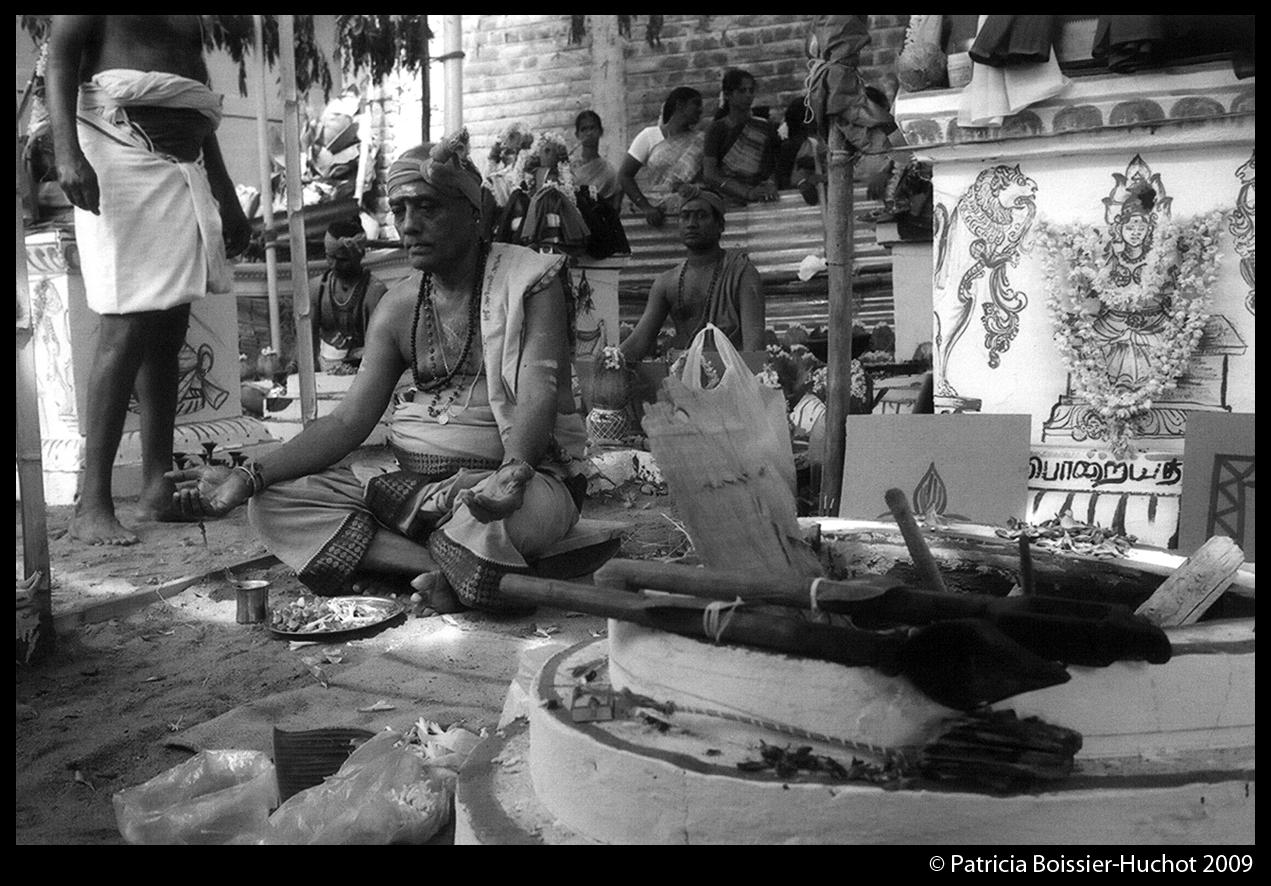Pondicherry Brahman 006