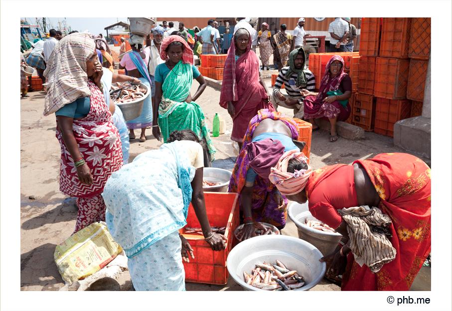 202cuddalore_india2011-sept