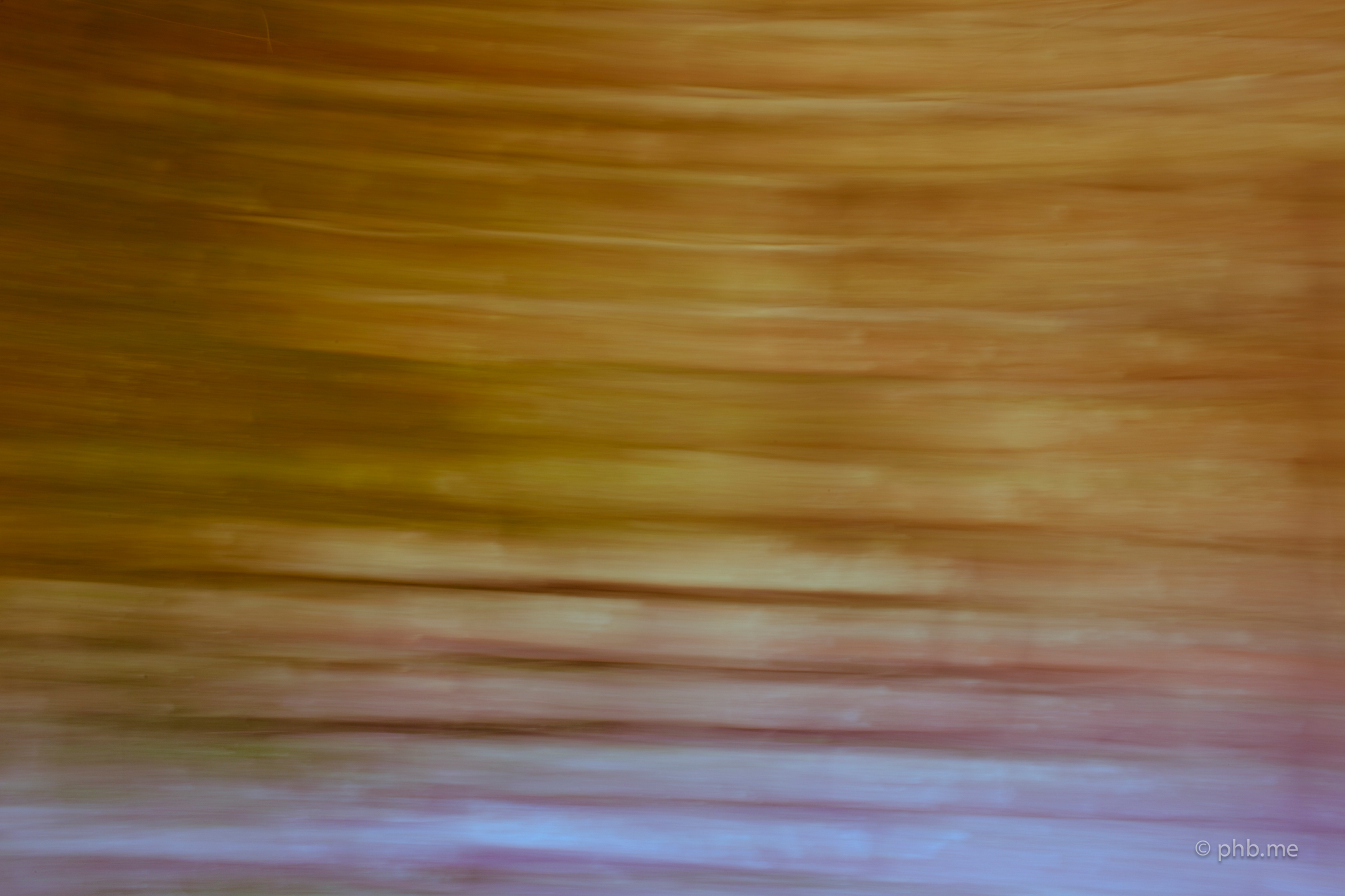 phb-me-nb-huchot-2014-painting-photo-img_0227