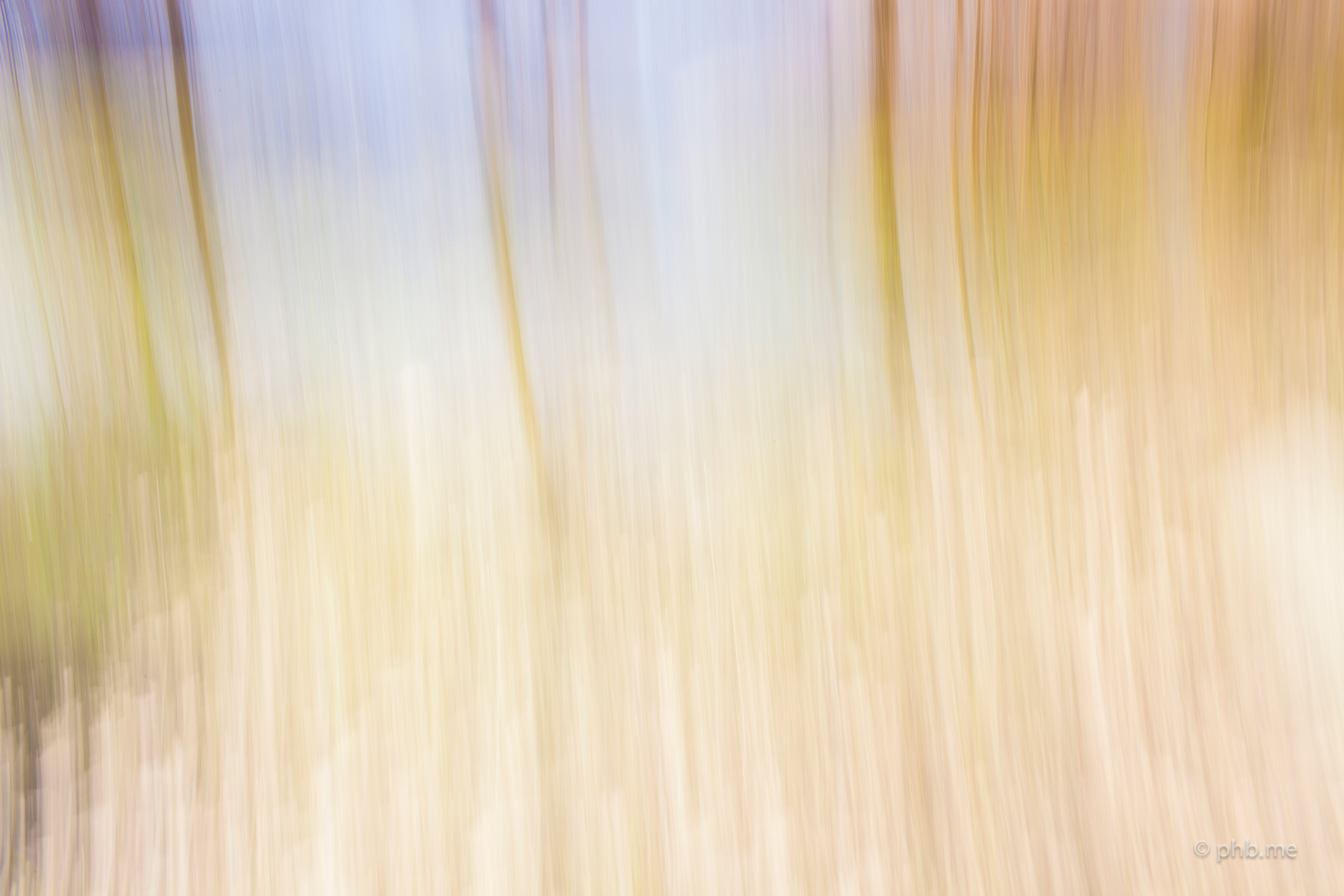 phb-me-nb-huchot-2014-painting-photo-img_0623-4-sur-berges-tarn